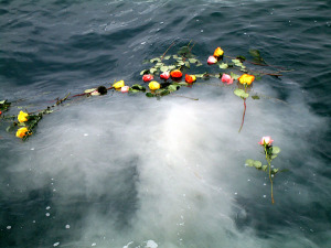Burial At Sea - Memorial Cruise - Scatter Ashes at Sea