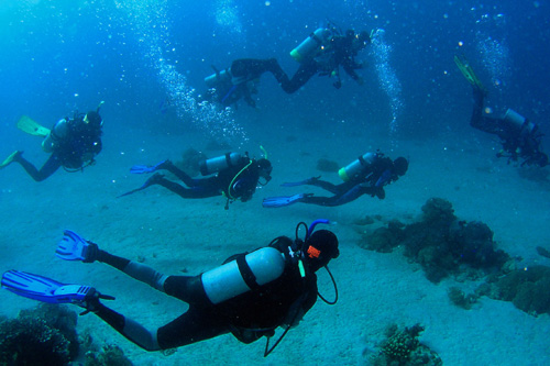 Myrtle Beach Scuba Diving Sites Prices