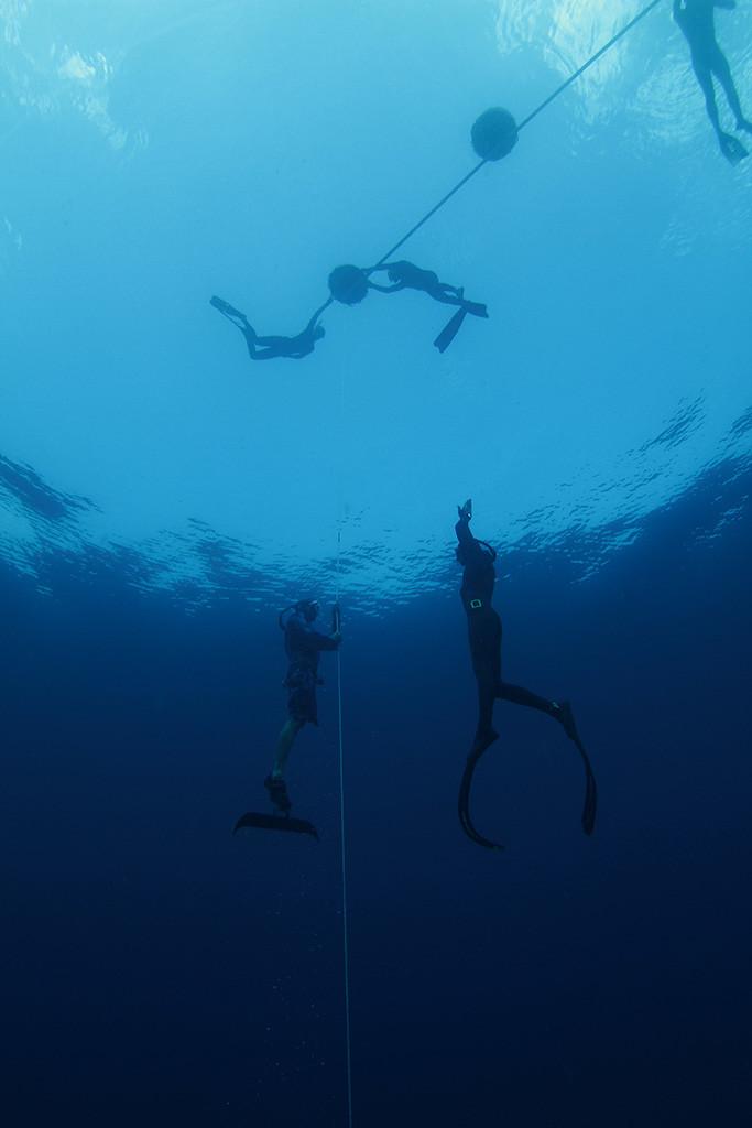 Freediving in Myrtle Beach
