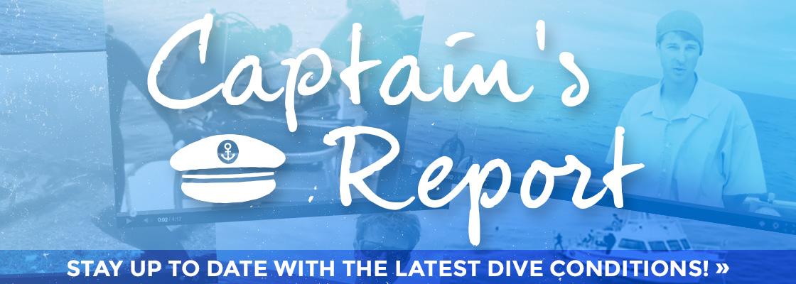 Scuba Express Captain's Report - Myrtle Beach, South Carolina Dive Conditions