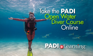 Open Water Diver - Myrtle Beach Scuba Certification